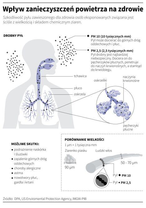 Wpływ zanieczyszczenia powietrza na zdrowie